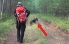 Een meisje is al 12 dagen vermist in het bos: als ze haar hond terugvinden, besluiten ze om het dier te volgen...