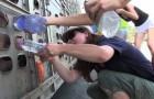 Video Video's van Varkens Varkens