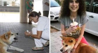 Questo cane ha atteso 6 giorni fuori dall'ospedale per il più dolce dei motivi