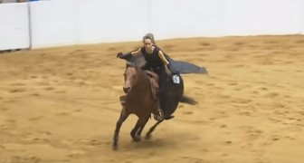 Bridleless Freestyle Reining Competition -- Amazing!