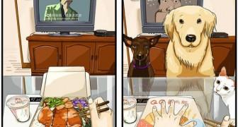 Je Leven Voor En Na De Komst Van Een Hond: Dit Zijn De Aandoenlijke Gevolgen Wanneer Je Een Hond In Huis Neemt