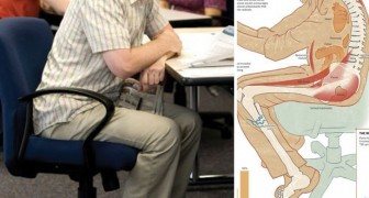 Stai seduto per più di 3 ore al giorno? Ecco cosa succede al tuo corpo