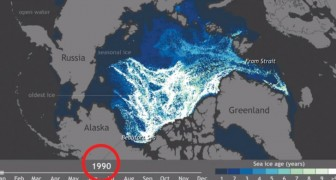 Watch 25 years of Arctic ice disappear in a minute ...