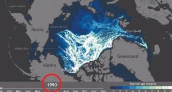 El hielo del Artico desaparece: este video muestra la inquietante realidad