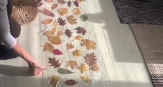 Introduce las hojas entres dos capas de film: lo que crea rinde su casa magicamente otoñal
