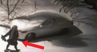 Il ne savait pas ce qui avait cabossé sa voiture, voici ce qu'il découvre grâce aux caméras