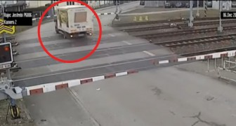 An almost lethal grade crossing incident! Wow!