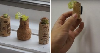 Discover how to make wine cork planters!