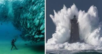 La magia del tempismo: 16 foto scattate esattamente al momento giusto!