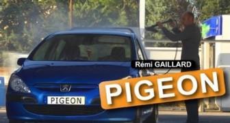 Rémi Gaillard: Die Taube