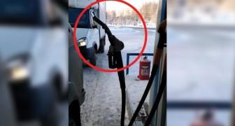Hoe koud is het in Rusland? Koud genoeg voor het ontstaan van deze bijzondere taferelen!