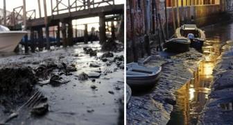 Het Eb Zorgt Voor Een Drooggevallen Venetië, Zie De Stad Zoals Je Die Nog Nooit Eerder Gezien Hebt