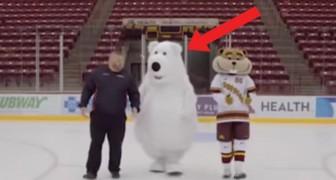 Ze proberen een reclamespot te maken op het ijs, maar houd je ogen gericht op de mascotte...