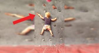 Il monte sur un mur à l'âge de 19 mois : nous vous présentons l'enfant prodige de l'escalade