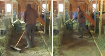 Deze boer is de stal aan het uitmesten, totdat de muziek begint... WOW!