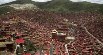 L'immense village de l'école tibétaine: voici comment vivent 40.000 moines à 4100 mètres d'altitude