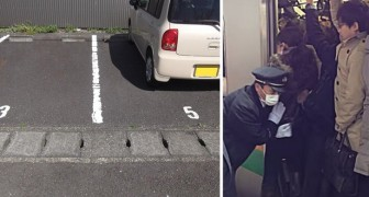 11 curiosità per capire cosa rende un viaggio in Giappone un'esperienza davvero diversa