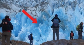 O muro de gelo treme e depois cai: as cenas são de tirar o fôlego