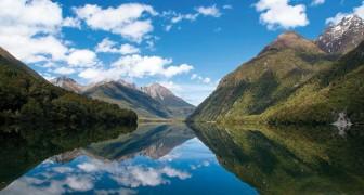 Gratis vlucht naar Nieuw-Zeeland en gratis verblijf alleen maar voor een sollicitatiegesprek? Waar wacht je nog op?