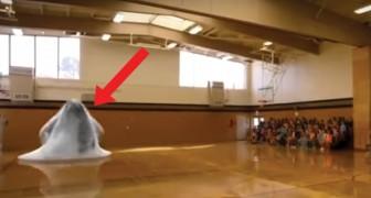 De hele school heeft zich op de tribune in de gymzaal verzameld: het spektakel dat dan volgt is adembenemend!