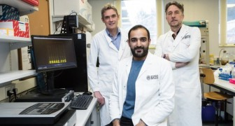 Tournant dans la recherche sur l'Alzheimer: la maladie est liée à des niveaux élevés de sucre dans le sang