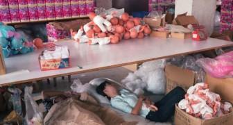 Incursion à Toy Story... pas un nouveau film animé mais l'histoire des usines de jouets en Chine