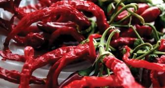 Manger du piment fait vivre plus longtemps: une étude découvre que cela réduit la mortalité de 13%