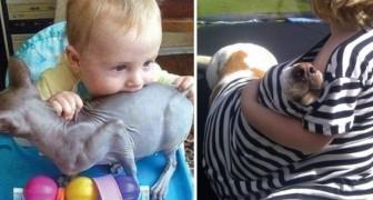 21 scene di ordinaria follia di quando animali e bambini abitano sotto lo stesso tetto