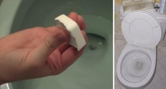Um truque ecológico e alternativo para deixar o seu banheiro sempre perfumado e limpo!