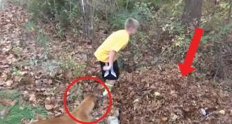 Het kind verdwijnt voor zijn ogen: de hond is in de war, maar blijkt een uitstekende waakhond te zijn!