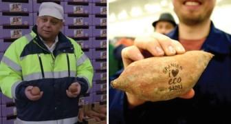 Eliminare gli imballaggi per la frutta ricorrendo al laser: la tecnologia green sbarca in Nord Europa