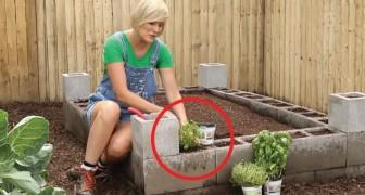 Wie man einen Platz für einen Gemüsegarten aus Betonblöcken baut
