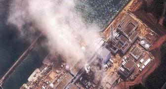 Eine norwegische Studie hat die Strahlung gemessen, die nach Fukushima ausströmte: Hier die Resultate