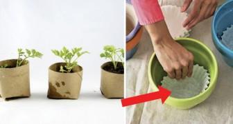 Idées de jardinage et de bricolage que tous les amateurs de la nature devraient savoir