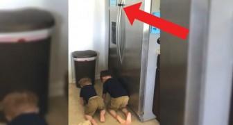 Mamma riprende di nascosto i bimbi in cucina: cosa stanno cercando di fare?