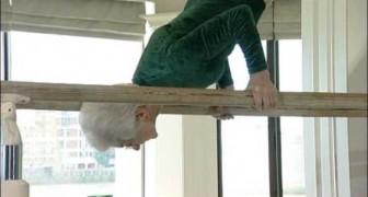Excuse me, who's the grandma here?!