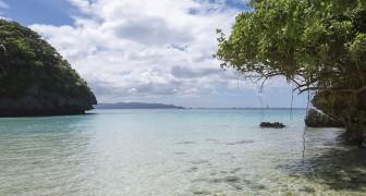 Dit kleine paradijs verbiedt junkfood om de gezondheid en de lokale economie te beschermen