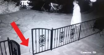 Esta mulher procura o brinquedo do cachorro: quando o encontra entende que cometeu um erro...