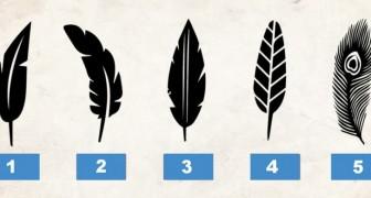 Welche Feder gefällt dir am besten? Die Antwort verrät etwas über deine Persönlichkeit