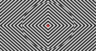 Fissare il punto rosso di questo video per 90 secondi vi darà un'idea di cosa sono le allucinazioni