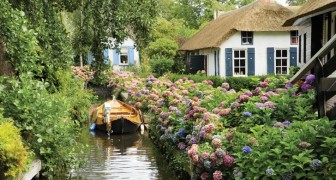 Giethoorn --- a Dutch village with only waterways and no streets!