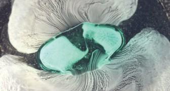 Cosa avviene a un antidolorifico nello stomaco? Questa simulazione ce lo mostra da vicino
