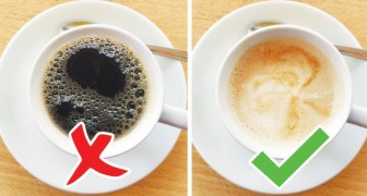 7 fatti curiosi sul caffè che ti faranno venire voglia di prenderne una tazzina