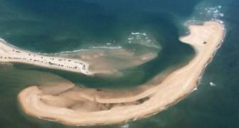 Aqui para ustedes la nueva y peligrosa isla que aparecio en el Triangulo de las Bermudas
