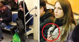 Unbelievable things that happen only ... on the subway!