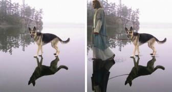 Avant et après Photoshop: voici les photomontages les plus drôles jamais réalisés sur le net