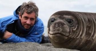 Charlie e la foca affettuosa