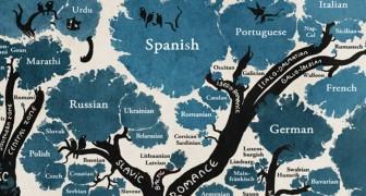 Cet arbre montrant le lien entre les langues changera votre vision du monde.