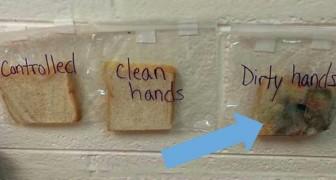 È importante lavarsi le mani? L'esperimento di questa maestra non lascia dubbi