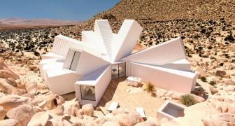 Container werden zu Traumhäusern: Ein geniales Projekt